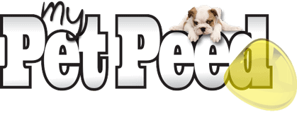 My Pet Peed – Pet Stain & Odor Remover