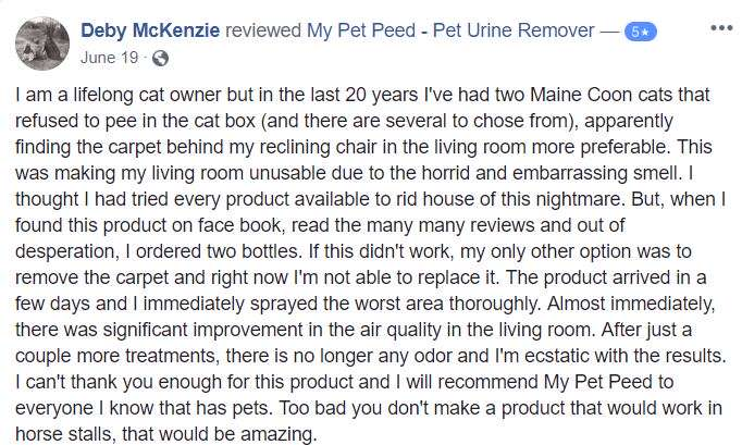<a href='https://www.mypetpeed.com/review_groups/carpet/'>Carpet</a>, <a href='https://www.mypetpeed.com/review_groups/cat/'>Cat</a>, <a href='https://www.mypetpeed.com/review_groups/odor/'>Odor</a>, <a href='https://www.mypetpeed.com/review_groups/urine/'>Urine</a>