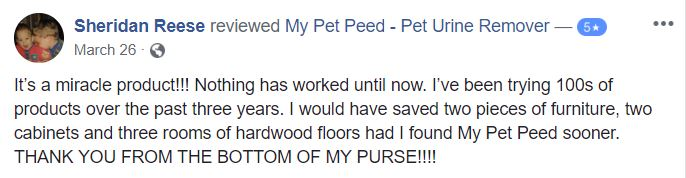 <a href='https://www.mypetpeed.com/review_groups/furniture/'>Furniture</a>, <a href='https://www.mypetpeed.com/review_groups/hardwood-floors/'>Hardwood Floors</a>, <a href='https://www.mypetpeed.com/review_groups/joe/'>Joe</a>