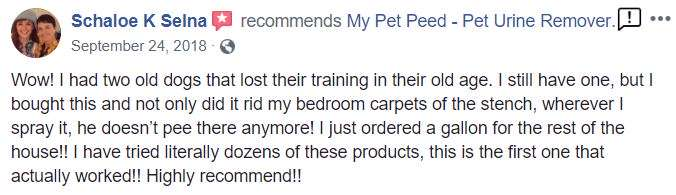 <a href='https://www.mypetpeed.com/review_groups/carpet/'>Carpet</a>, <a href='https://www.mypetpeed.com/review_groups/dog/'>Dog</a>, <a href='https://www.mypetpeed.com/review_groups/easy-to-use/'>Easy to use</a>, <a href='https://www.mypetpeed.com/review_groups/joe/'>Joe</a>, <a href='https://www.mypetpeed.com/review_groups/odor/'>Odor</a>, <a href='https://www.mypetpeed.com/review_groups/quit-returning-to-area/'>Quit Returning To Area</a>, <a href='https://www.mypetpeed.com/review_groups/urine/'>Urine</a>