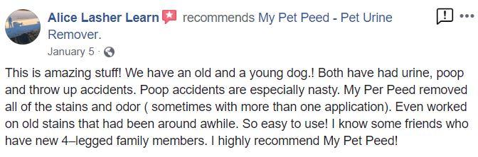 <a href='https://www.mypetpeed.com/review_groups/dog/'>Dog</a>, <a href='https://www.mypetpeed.com/review_groups/easy-to-use/'>Easy to use</a>, <a href='https://www.mypetpeed.com/review_groups/feces/'>Feces</a>, <a href='https://www.mypetpeed.com/review_groups/joe/'>Joe</a>, <a href='https://www.mypetpeed.com/review_groups/odor/'>Odor</a>, <a href='https://www.mypetpeed.com/review_groups/old-stains/'>Old Stains</a>, <a href='https://www.mypetpeed.com/review_groups/stains/'>Stains</a>, <a href='https://www.mypetpeed.com/review_groups/urine/'>Urine</a>, <a href='https://www.mypetpeed.com/review_groups/vomit/'>Vomit</a>