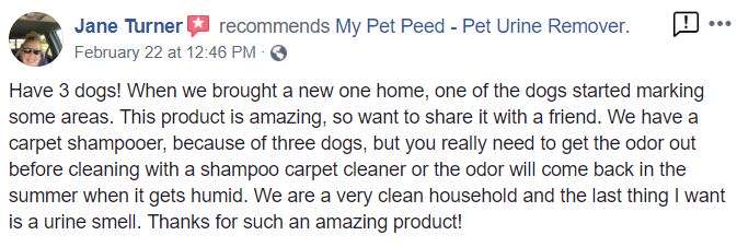 <a href='https://www.mypetpeed.com/review_groups/carpet/'>Carpet</a>, <a href='https://www.mypetpeed.com/review_groups/dog/'>Dog</a>, <a href='https://www.mypetpeed.com/review_groups/joe/'>Joe</a>, <a href='https://www.mypetpeed.com/review_groups/odor/'>Odor</a>, <a href='https://www.mypetpeed.com/review_groups/urine/'>Urine</a>