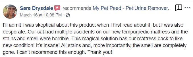<a href='https://www.mypetpeed.com/review_groups/cat/'>Cat</a>, <a href='https://www.mypetpeed.com/review_groups/joe/'>Joe</a>, <a href='https://www.mypetpeed.com/review_groups/mattress/'>Mattress</a>, <a href='https://www.mypetpeed.com/review_groups/odor/'>Odor</a>, <a href='https://www.mypetpeed.com/review_groups/stains/'>Stains</a>, <a href='https://www.mypetpeed.com/review_groups/urine/'>Urine</a>
